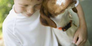 Dog_kid