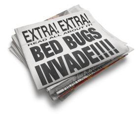 Bedbugs_Yikes