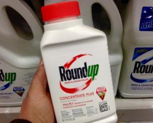 Farmers-sue-Monsanto