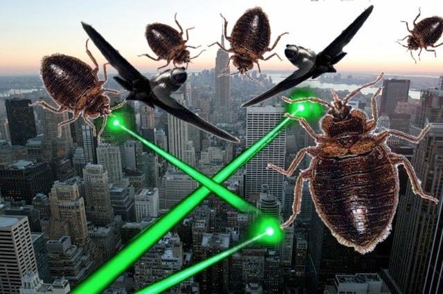 062415bedbugs