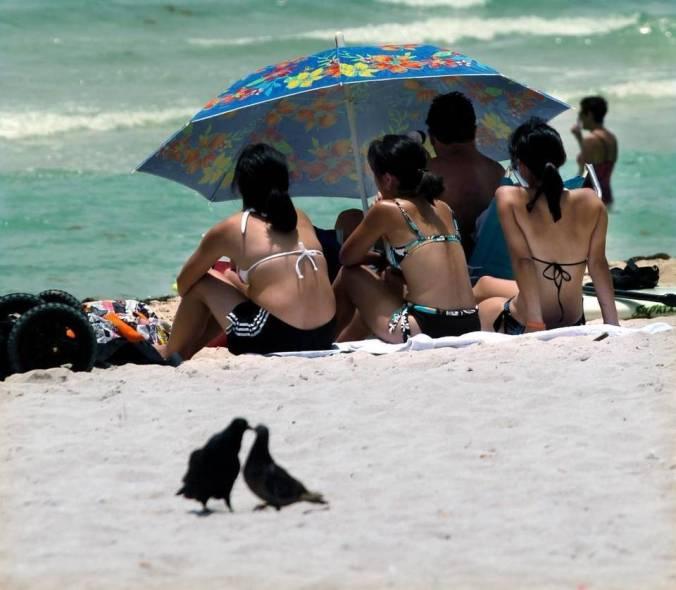 beachgoers.jpg