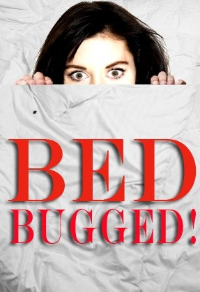 dating someone with bed bugs