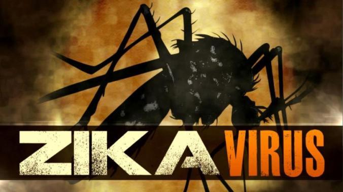 zika+virus+mgn1.jpg